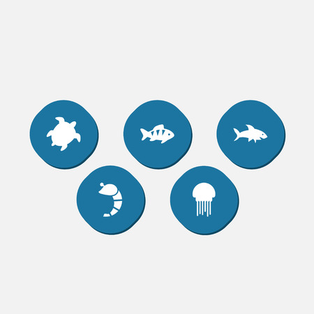 Set Of 5 Seafood Icons Set.Collection Of Crustaceans, Fish, Tortoise And Other Elements. Illustration