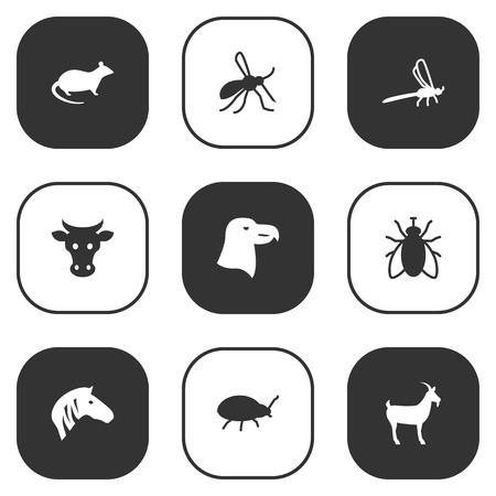Set van 9 Levend Icons Set. Collectie van paard, bug, waterjuffer en andere elementen.
