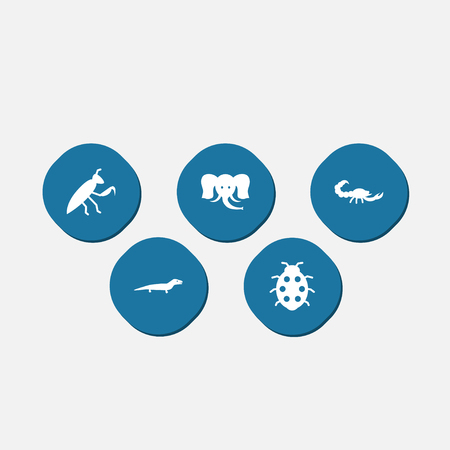 ladybug: Set Of 5 Zoo Icons Set.Collection Of Poisonous, Beetle, Trunked Animal And Other Elements.