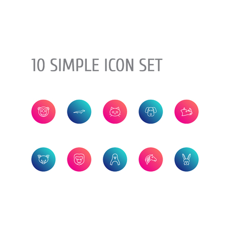 Collection Of Lion, Rhino, Lizard And Other Elements.  Set Of 10 Zoo Outline Icons Set.