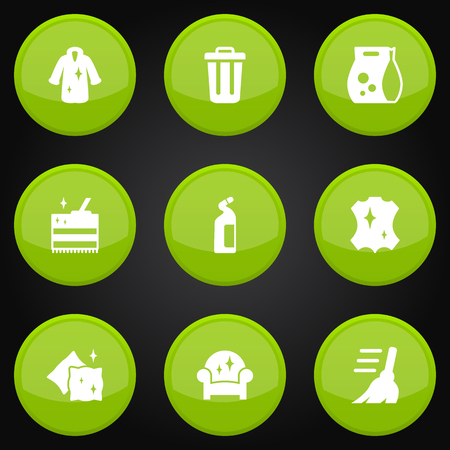 Set Of 9 Harvesting Icons Set.Collection Of Cushion, Cleaning, Broom And Other Elements.