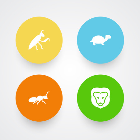 Set Of 4 Zoo Icons Set.Collection Of Grasshopper, Tortoise, Wildcat And Other Elements. Illustration