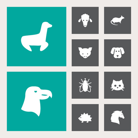 Collection Of Mouse, Porcupine, Aquila And Other Elements.  Set Of 10 Animal Icons Set.