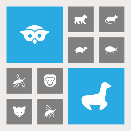 Set Of 10 Zoo Icons Set.Collection Of Tortoise, Mouse, Fly And Other Elements. 일러스트