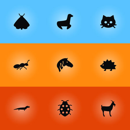 Set Of 9 Zoo Icons Set.Collection Of Gecko, Livestock, Pussy And Other Elements. Illustration
