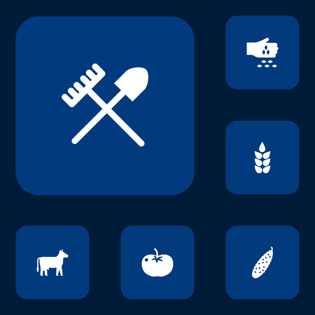 Set Of 6 Agricultural Icons Set.Collection Of Seed, Grain, Vegetable And Other Elements.