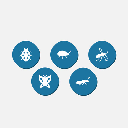 Set Of 5 Zoo Icons Set.Collection Of Gnat,  Monarch And Other Elements.