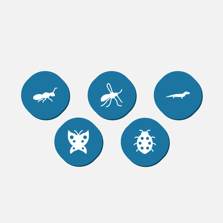Set Of  Zoology Icons Set.Collection Of Gnat, Monarch And Other Elements.