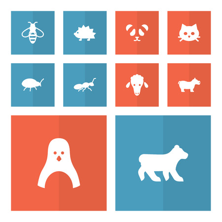 Collection Of Polar, Bear, Porcupine And Other Elements.  Set Of 10 Zoology Icons Set.   イラスト・ベクター素材