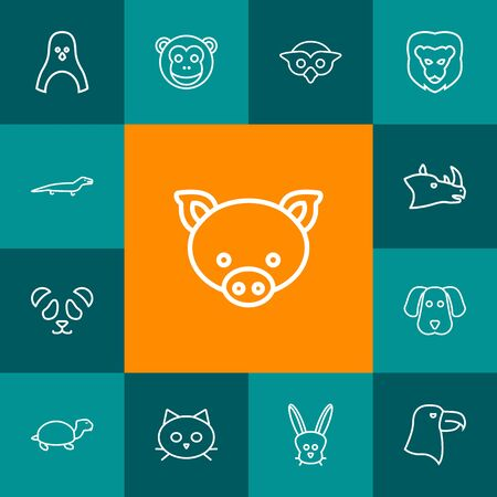 Collection Of Rabbit, Dog, Lizard And Other Elements.  Set Of 13 Zoo Outline Icons Set.  Stock Photo