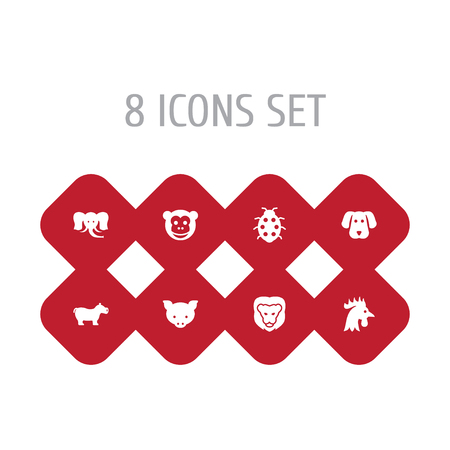 Set Of 8 Zoology Icons Set.Collection Of Wildcat, Hippo, Beetle And Other Elements.