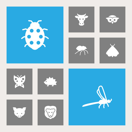 Set Of 10 Zoology Icons Set. Collection Of Porcupine, Beetle, Damselfly And Other Elements.