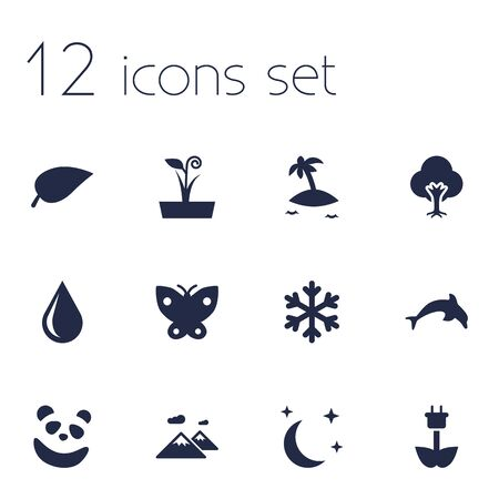 Set of 12 bio icons set. Collection of mountain, snowflake, leaf and other elements.