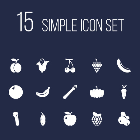 Set of 15 fruit icons set. Collection of grape, apple, pumpkin and other elements.