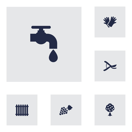 Set of 6 household icons set. Collection of grape, scissors, water supply and other elements.