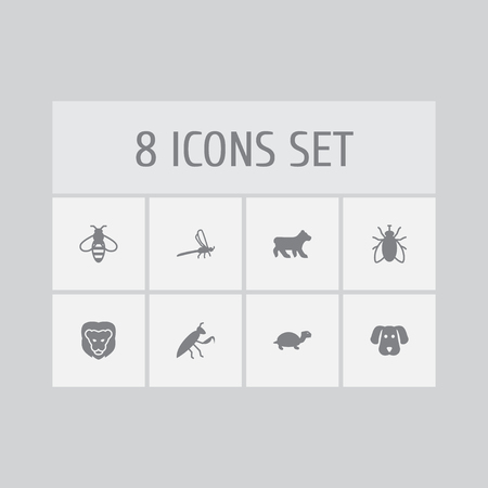 Set of 8 animal icons set. Collection of lion, turtle, mantis and other elements.