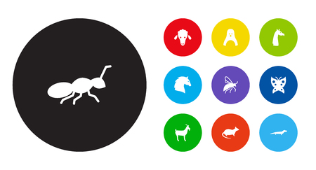 Set of 10 zoology icons set. Collection of goat, ant, penguin and other elements.
