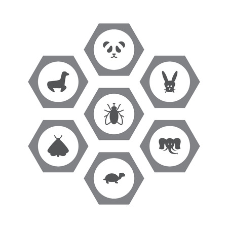 Set of 7 zoo icons set. Collection of seal, rabbit, panda elements.