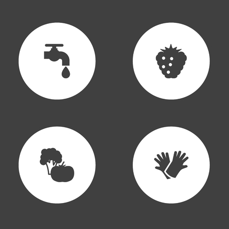 Set of 4 household icons set. Collection of gloves, water supply, vegetable and other elements.
