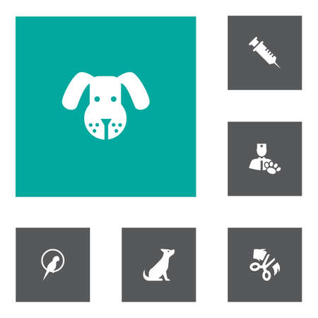Set of 6 pets icons set. Collection of vet, dog, parrot and other elements.