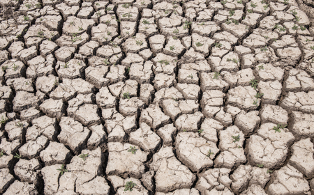 textured backgrounds: dry soil arid. drought land textured backgrounds Stock Photo