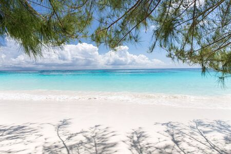 Beautiful crystal clear sea and white sand beach at Tachai island, Andaman, Thailand. Copy space background