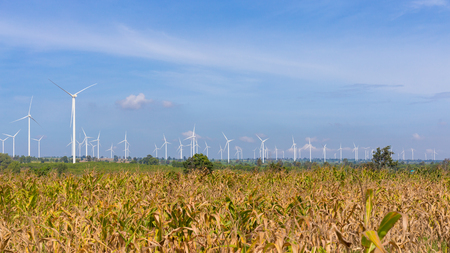 Panoramic of Eco power, Wind turbine on the green grass and corn field over the blue cloudy sky