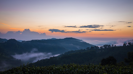 Sunrise in mountain at Doi Mae Salong Mae Fah Luang, Chiang Rai Thailand. Panorama landscape. Standard-Bild
