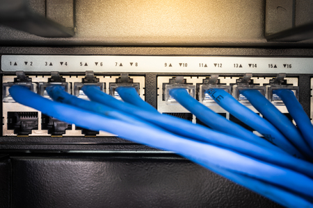 Network cables connected in network switches for communication and data. Select focus