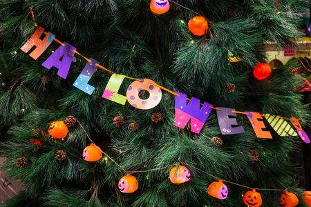 Pumpkins with lights and colored paper wrapping Halloween text decorated on trees at a Halloween party.Pumpkins with lights and colored paper wrapping Halloween text decorated on trees at a Halloween party.