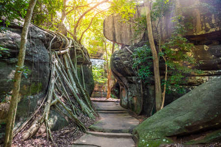A path through a large rock in a deep forest in the middle of the mountain.
