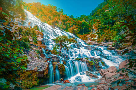 Amazing deep forest big waterfall at Mae Ya waterfall, Doi Inthanon national park Chiangmai, Thailand. Translate text