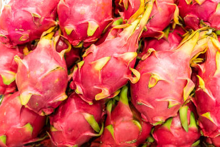 Many fresh dragon fruit lined up in the background.Many fresh dragon fruit lined up in the background.