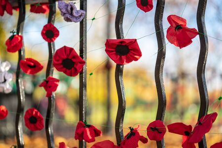 Remembrance Day, sometimes known informally as Poppy Day.A closeup of knitted Poppies to commemorate Armistice Day in the UK