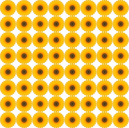 spin: Sun flower spin pattern with white background Stock Photo