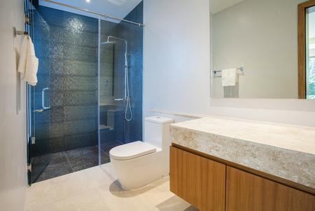 고급 욕실에는 세면대와 변기가 있습니다.