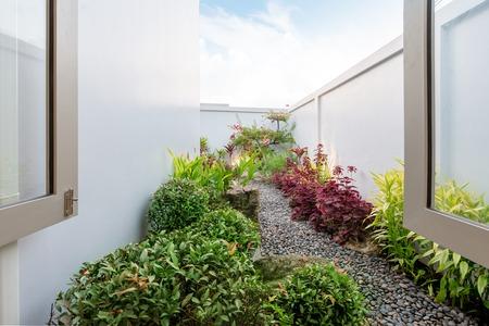 green garden outside the house 写真素材