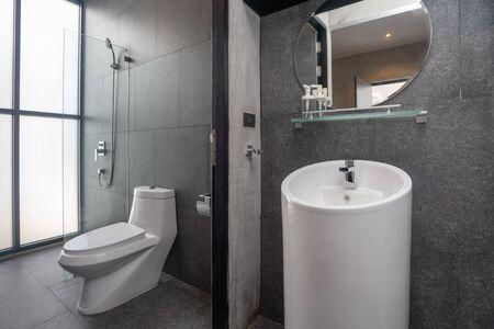 Luxury bathroom features basin, toilet bowl