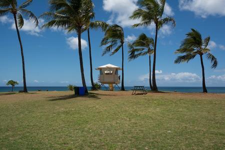 lifeguard tower: Lifeguard tower on the beach in Haleiwa, Oahu, Hawaii