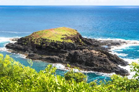 islet: Mokuaeae Islet in Kilauea Point, Kauai, Hawaii
