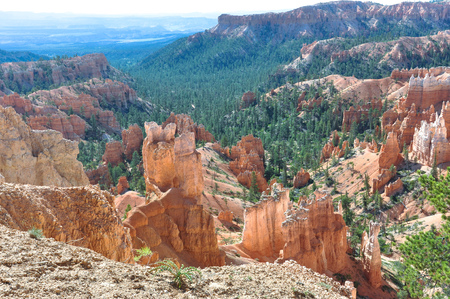 bryce canyon: The Bryce Canyon, Utah