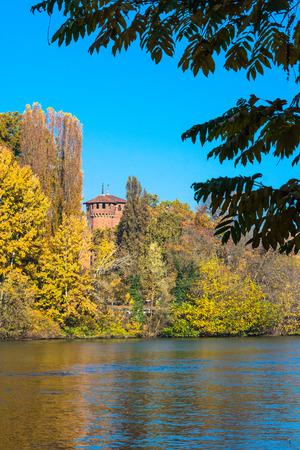 riverside tree: The castle through the vegetation, Turin, Italy