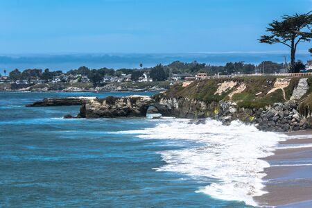 arboleda: costa del Pacífico Grove, Monterey, California Foto de archivo