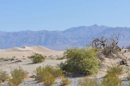 sedimentation: Death Valley sand dunes, California