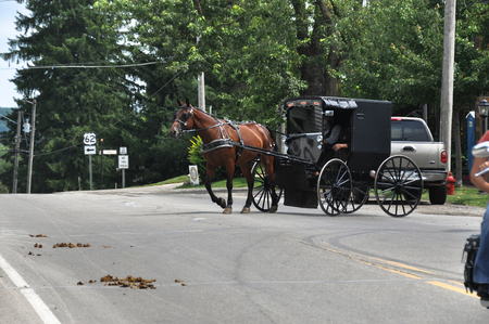 The Amish Buggy down a country road, Ohio Editorial