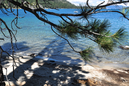 tahoe: View of Lake Tahoe through the branches, California Stock Photo