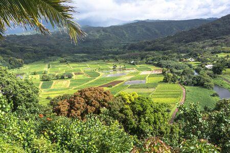 kauai: Hanalei Valley, Kauai, Hawaii Stock Photo