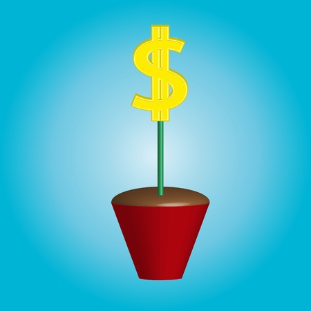 growing golden dollars in potted plants Stock Photo - 16242980