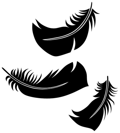Feather Set Stock Vector - 14331460