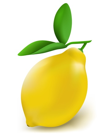 jus de citron: De citron frais sur un fond blanc vecteur de version Illustration
